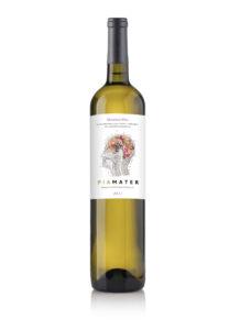 Piamater vino sensorial y cerebral