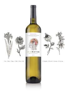branding botella de vino