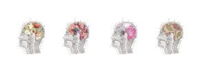 Branding sensorial emociones