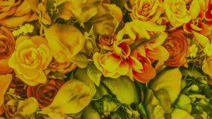 flores creatividad